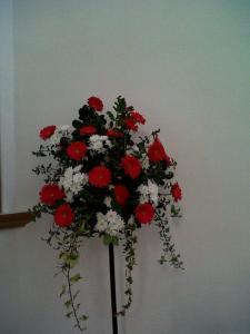 Img00101-20120113-1123